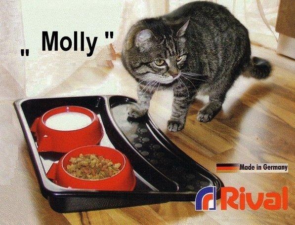 suprava-misiek-s-podnosom-rival-molly-906-000