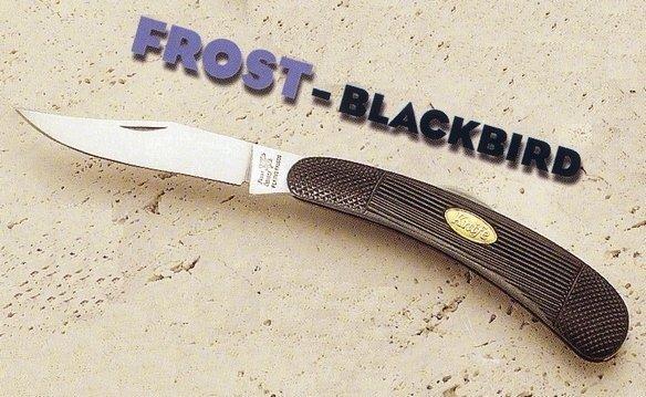 FROST Blackbird Bowie